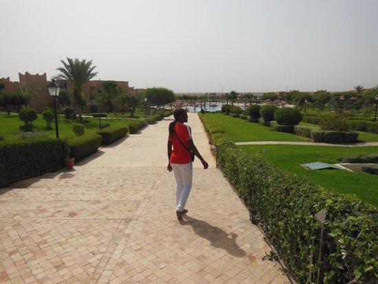 Marrakech Ryads Parc & Spa : une vue de la piscine et jardin