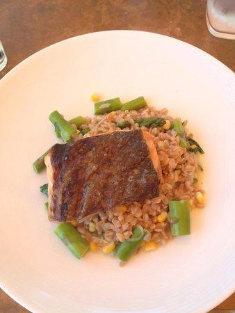 Mac's Shack: Salmon with farro grain & greens.