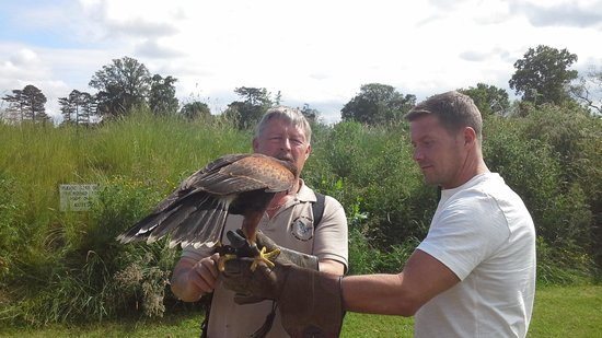 York Bird of Prey Centre: hands on !