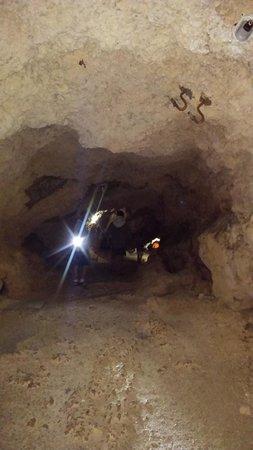 Barceló Solymar Arenas Blancas Resort: excursion grotte avec plongée en apnée