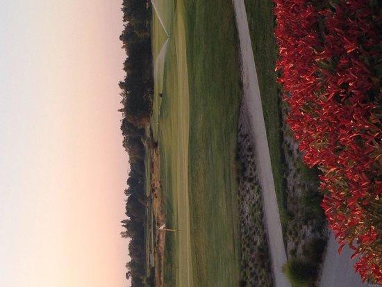 Golf du Médoc Resort : View from restaurant terrace