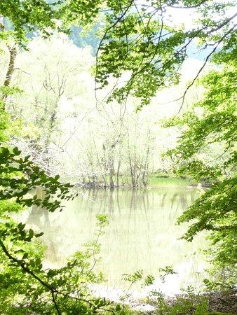 Biogradska Gora National Park : Lake in its best