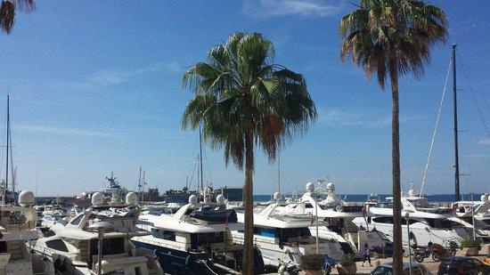Riviera Marriott Hotel La Porte de Monaco : Vue mer
