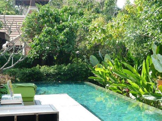 Siripanna Villa Resort & Spa: Piscina, vista d ela zona más amplia