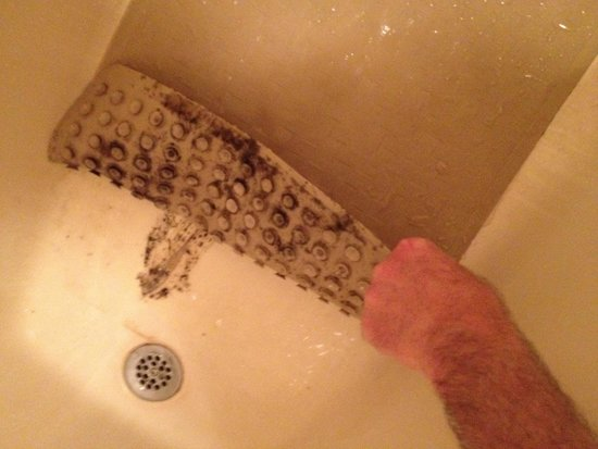 Super 8 Dalton: Mold in bathtub