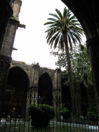 Catedral de Barcelona: Courtyard in Barcelona Cathedral