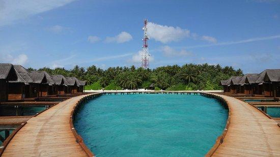 Fihalhohi Island Resort: Fihalhohi island
