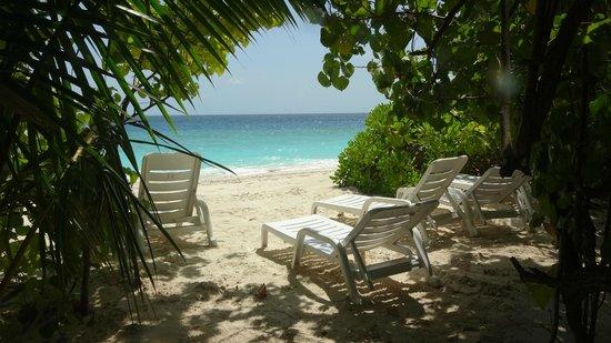 Fihalhohi Island Resort: The beach