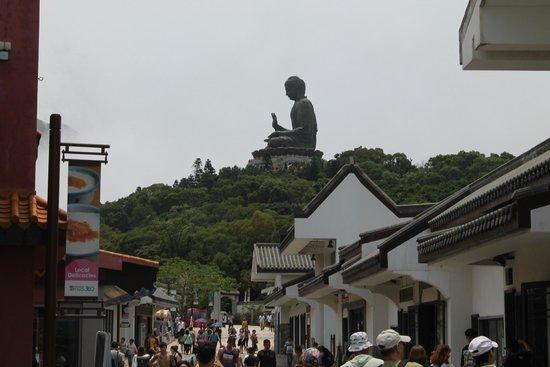 Grand Bouddha : The Big Buddha