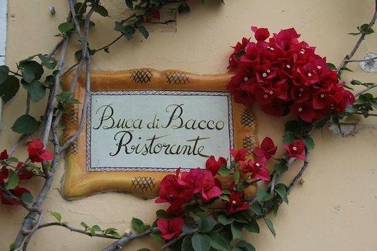 Hotel Buca di Bacco: Restaurant