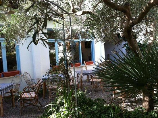 Hostal Paris: jardin