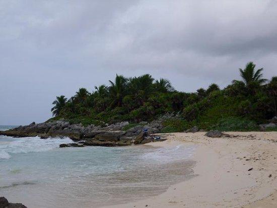 Hotel Riu Yucatan : près de l hotel