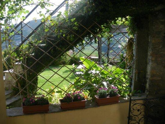 Zia Mari: garden