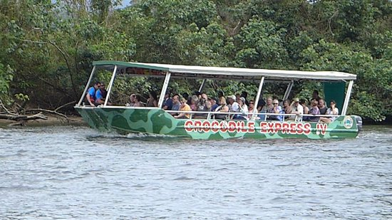 Tropical Horizons Tours: Croc Boat