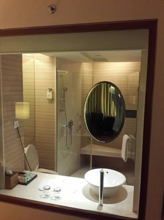 Courtyard By Marriott Hyderabad : Courtyard Marriott room 1112, 15.06.2014. The loo from the room. (you can drop the blinds for pr