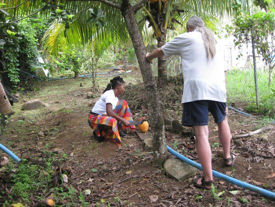 OhLaLa Villas : Deborah cutting young coconut for drink from Nature's Breast