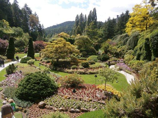 The Butchart Gardens : Sunken Garden