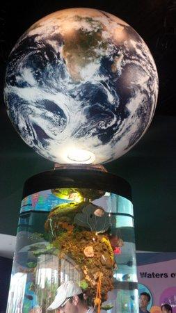 Ripley's Aquarium Of Canada: entrance