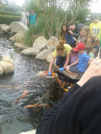 Palma Aquarium: exterieur