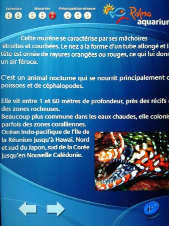Palma Aquarium : explication