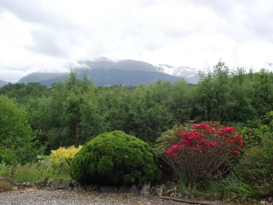 The Braes Guest House: view from the lounge