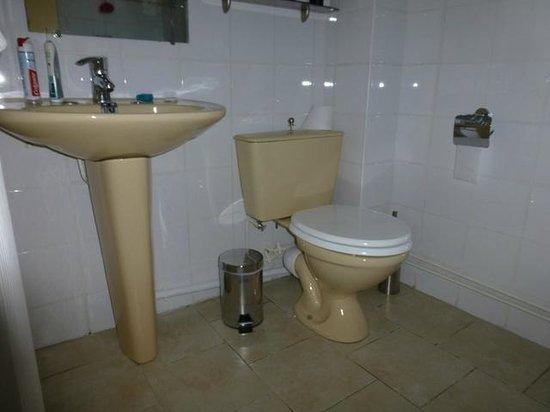 Hotel Le Plantagenet : bathroom