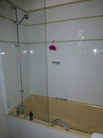 Hotel Le Plantagenet : bath