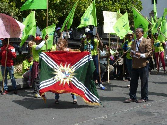 Plaza de la Independencia (Plaza Grande) : manifestazione politica