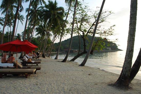 The Emerald Cove Koh Chang: Пляж