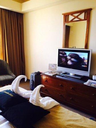 Olive Tree Hotel: Un po' di tv