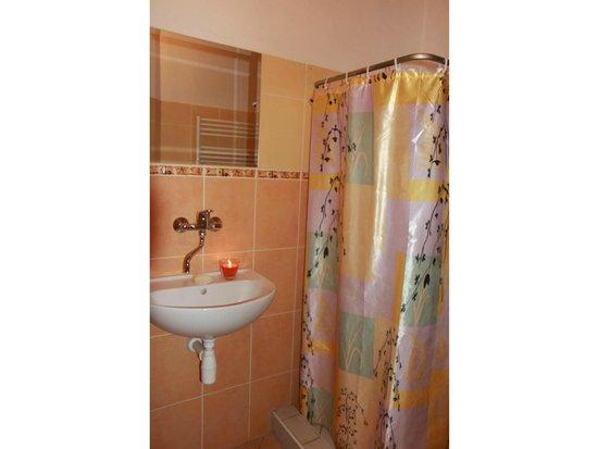 Bed & Breakfast Penzion Brno: Bathroom