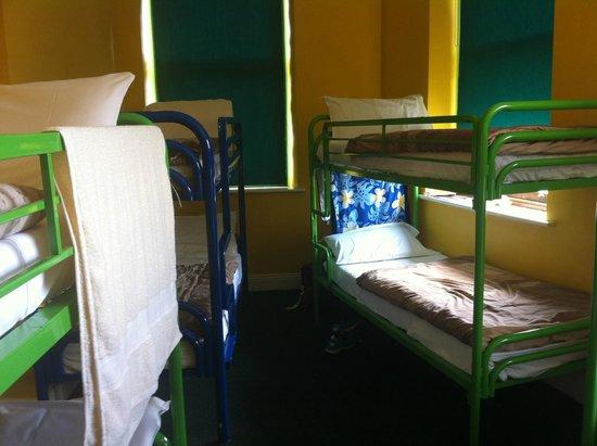 Paddy's Palace: Dorm