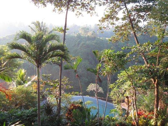 Pita Maha Resort and Spa: Blick in den Resortgarten