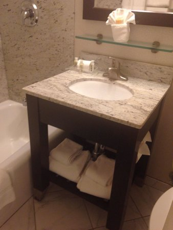 Holiday Inn Boston-Dedham Hotel & Conference Center: Clean, clean bathroom.