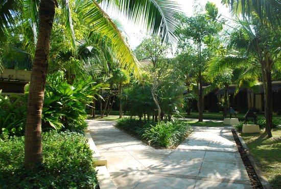 Centara Koh Chang Tropicana Resort: Территория отеля