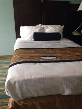 BEST WESTERN PLUS Berkshire Hills Inn & Suites: Clean, comfortable beds.
