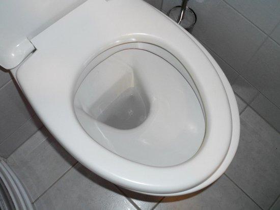 Balneo Hotel Zsori Thermal & Wellness: Wc seat was smaller than flush toilet