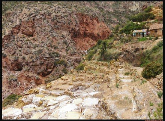 Salinas de Maras: Maras Salt Mines, Urubamba, Cuzco, Pérou