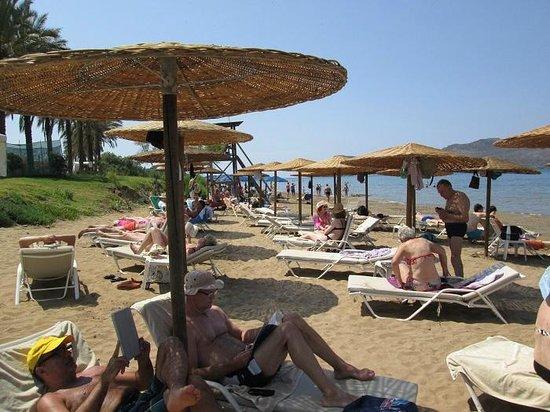 Santa Marina Plaza: Spiaggia riservata