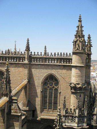 Torre Giralda : CATTEDRALE VISTA DALLA GIRALDA