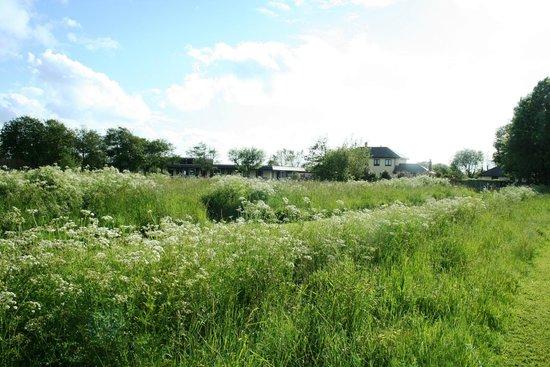 Saunton Sands Farm: Location