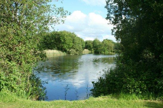 Saunton Sands Farm: Lake