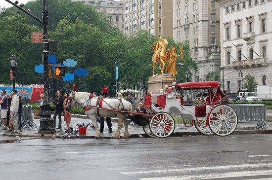 Fifth Avenue: la 5th in prossimità ci Central Park