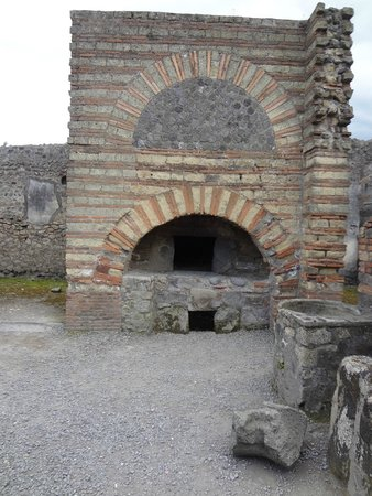 DriverinRome Transportation & Tours : pompeii