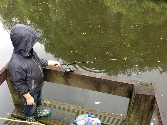 Bosinver Farm Cottages: Fishing in the lake