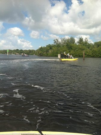 Speedy's Airboat Tours: So much fun!