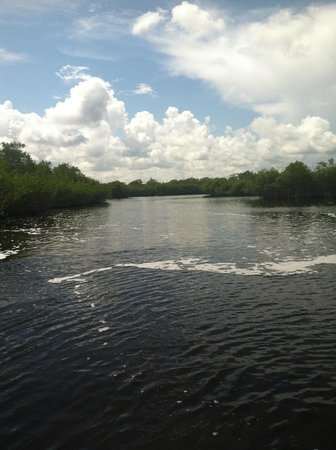 Speedy's Airboat Tours: Everglades