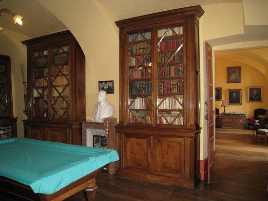 Hotel Restaurant Chateau de Creissels: bibliotheek