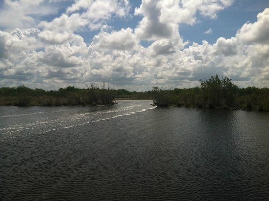 Speedy's Airboat Tours: Everglades