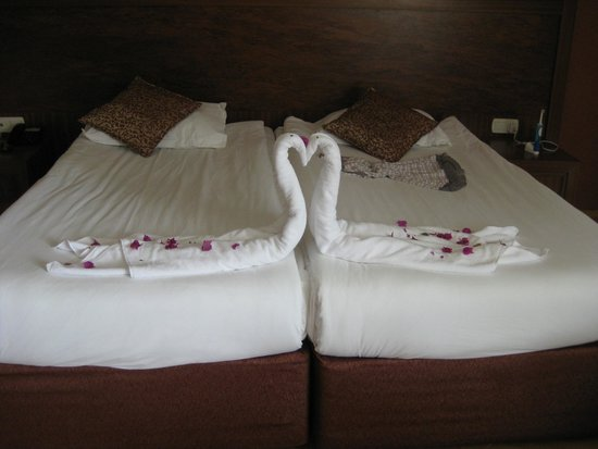 Alba Royal Hotel: Room